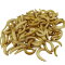 Buffalo larver - Frysetørret
